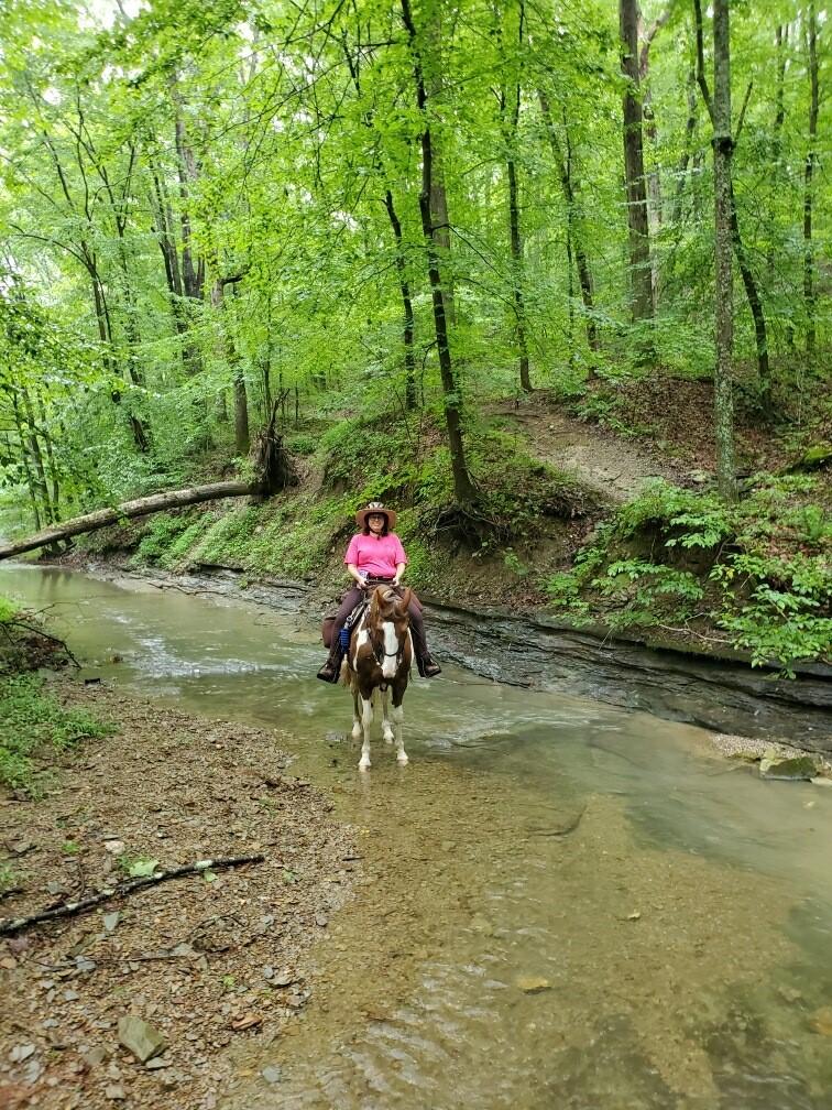 Hoosier Horse Camp
